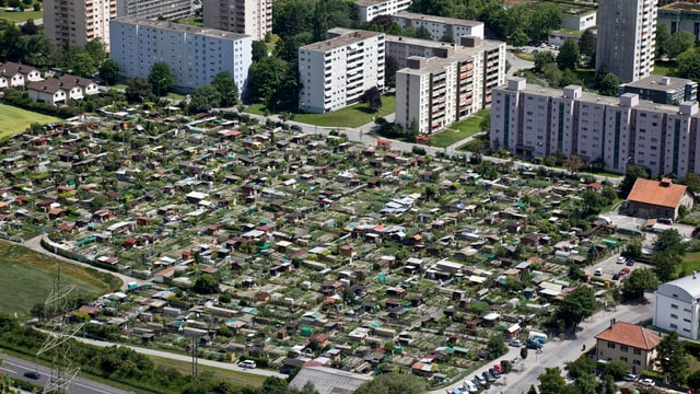 Die betroffenen Schrebergärten im Churer Rheinquartier