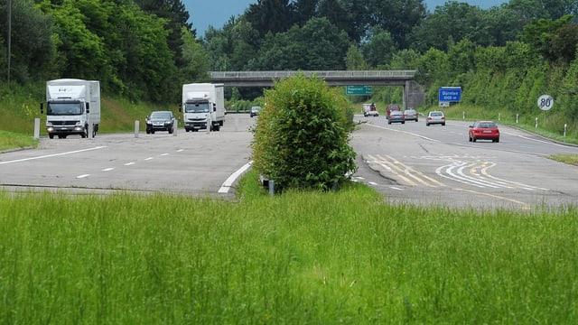 Autobahn endet in einer Wiese
