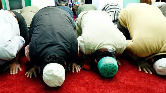 Mänenr beim Beten in der Moschee.
