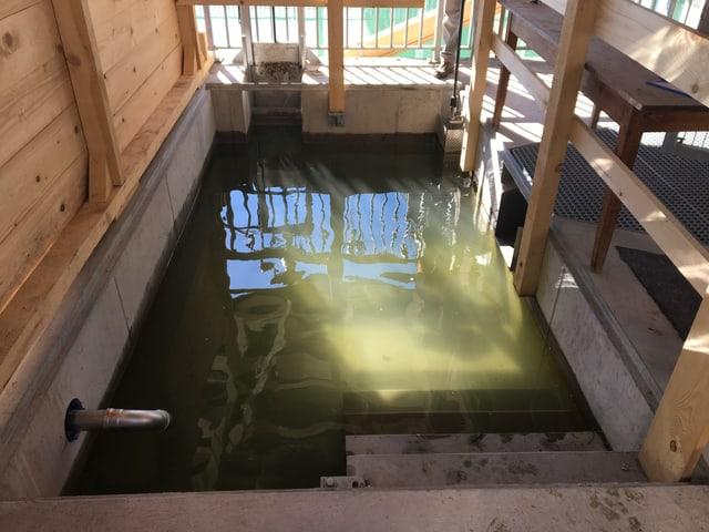 Zählbecken für Fische im Kraftwerk Eglisau