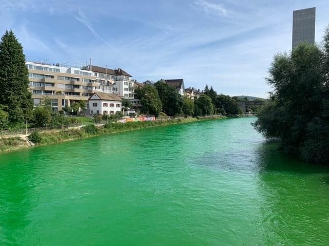 Das Wasser der Limmat erscheint ungewöhnlich grün.