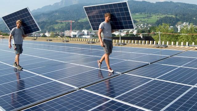 Arbeiter tragen Solarmodule