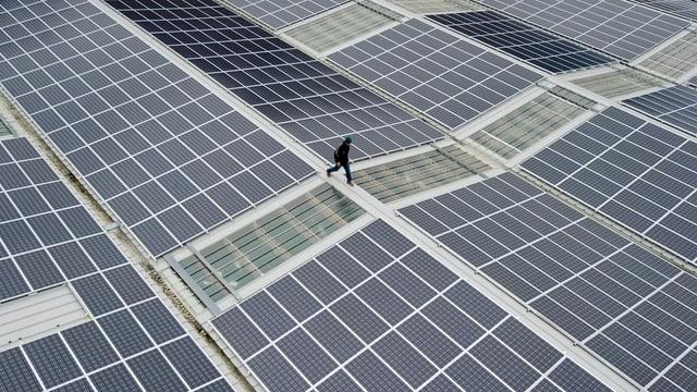 Dächer mit Photovoltaik-Anlagen
