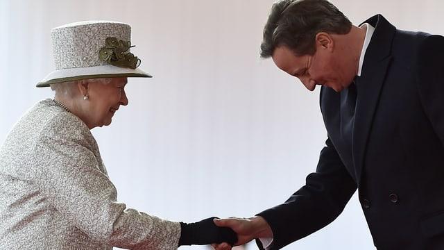 Cameron und Queen.