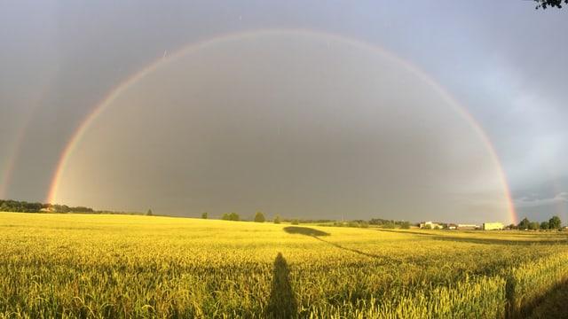 Grosser Regenbogen von einer Seite zur anderen. Man sieht den ganzen Bogen.