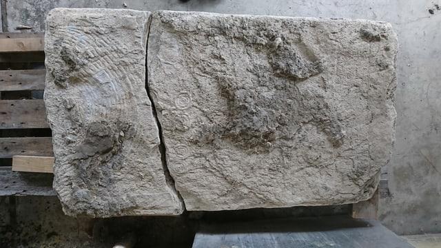 Eine Grabplatte mit Gravuren drauf.