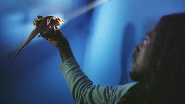 Ein Mann hebt einen Leguan gegen einen Lichtstrahl.