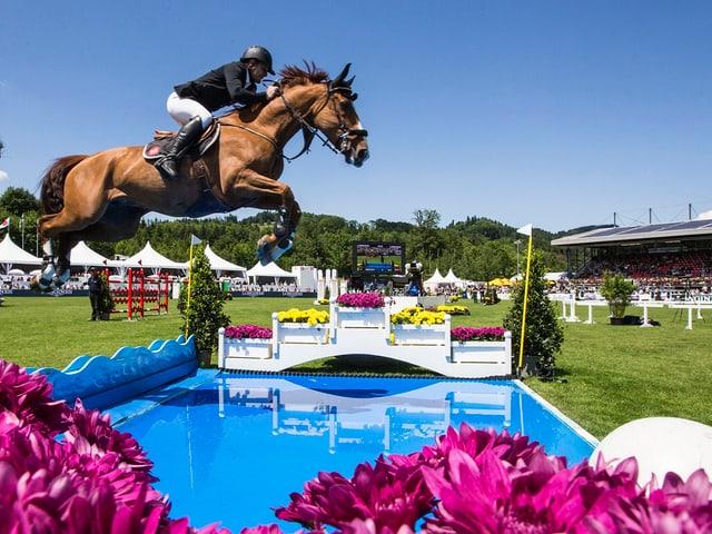 Pferd springt über Wassergraben