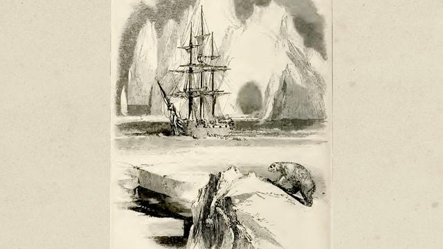 Historische Skizze: Segelschiff in einer Eislandschaft, im Vordergrund ein Eisbär.