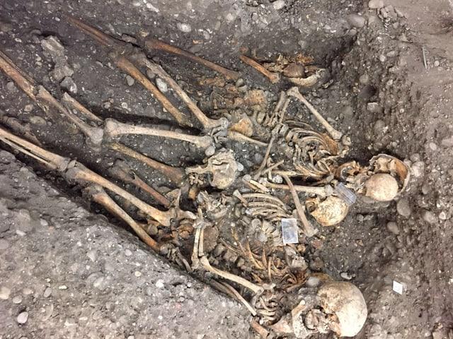 Mehrere Skelette in der Erde