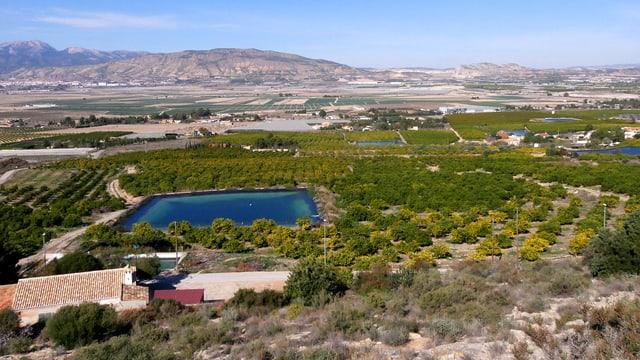 Spaniens «Früchte- und Gemüsegarten» in der Region Murcia.