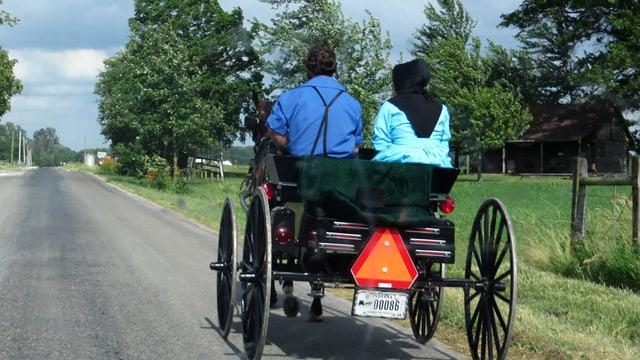 Eine Pferdekutsche mit zwei Personen fährt auf einer Strasse