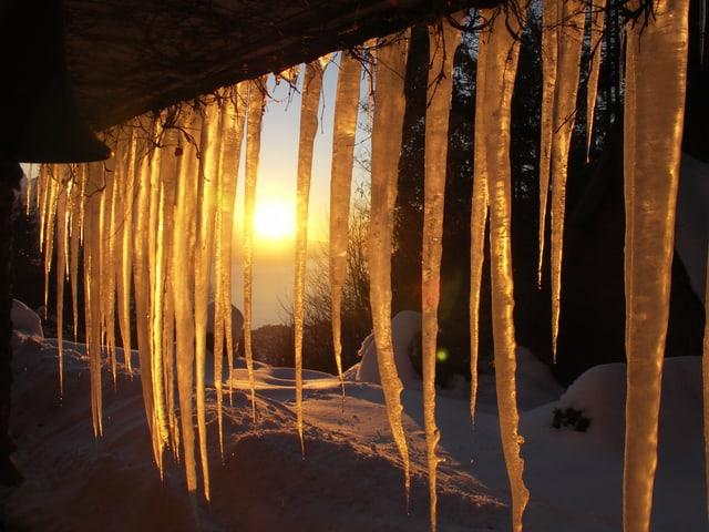 Eiszapfen werden von der Sonne angestrahlt.