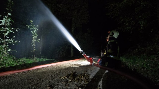 Feuerwehrmänner spritzen Wasser im Wald bei Nacht.