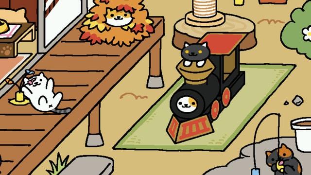 Katzen spielen auf der Veranda.
