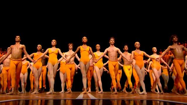 Viele Tänzer stehen in einer Reihe und halten sich an der Hand.