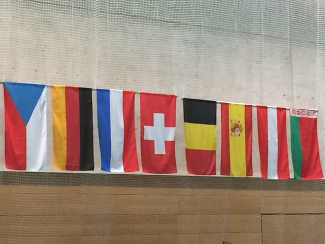 Fahnen verschiedener Länder.