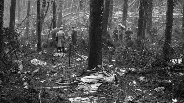 Trümmer im Wald, Menschen stehen herum.