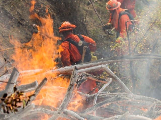 Feuerwehrleute bekämpfen das Feuer