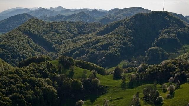 Landschaft im Aargauer Jura mit viel grünem Wald