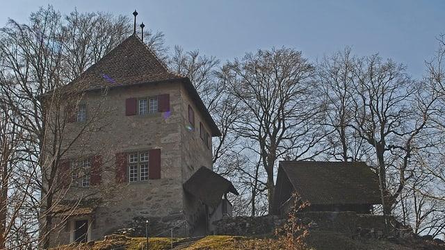 Schloss Buchegg