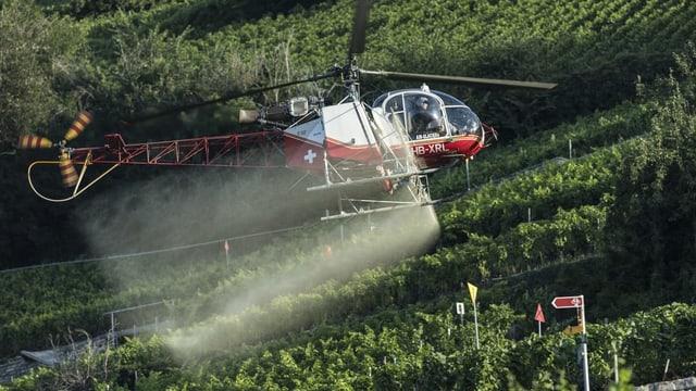 Helikopter spritzt Pestizide auf Feld.