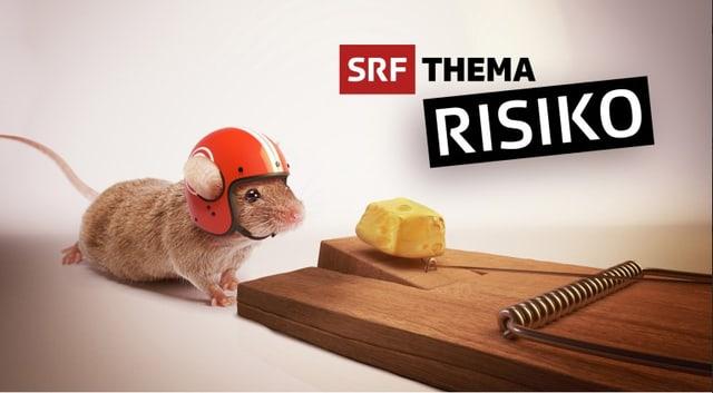 SRF Thema Risiko