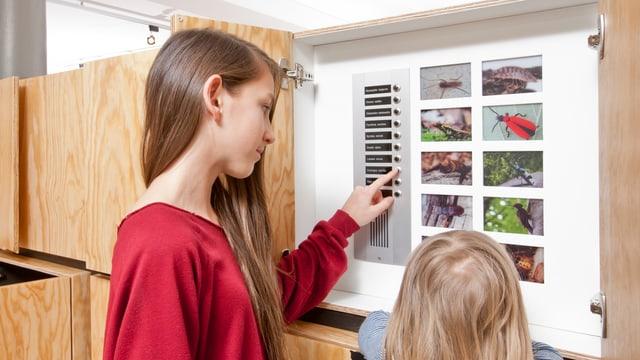 Ein Mädchen drückt in der Ausstellung auf einen Knopf der «Totholz-WG».
