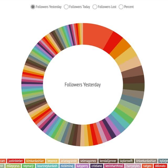 Eine Kreisscheibe mit farbigen Unterteilungen zeigt den Follower-Verlust der Instagram-Prominenz.