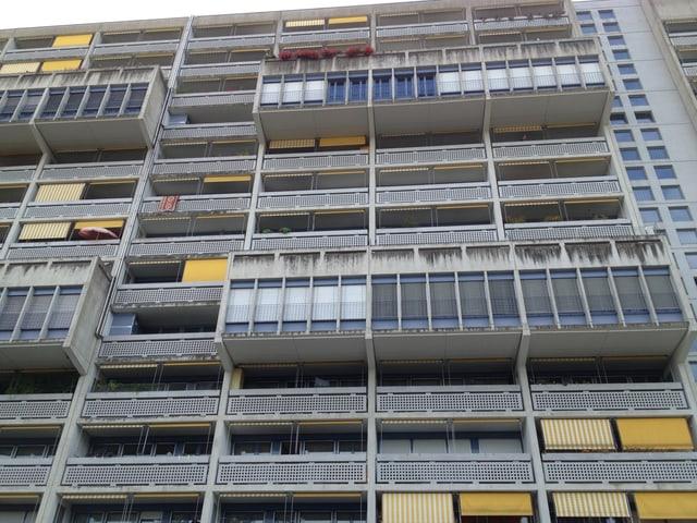 Blick auf die  Wohnsiedlung Unteraffoltern mit vielen engen Balkonen mit grauen Geländern.