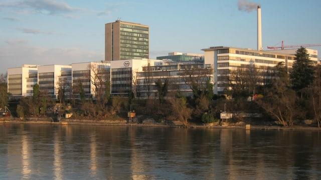 Roche-Gebäude am Rhein