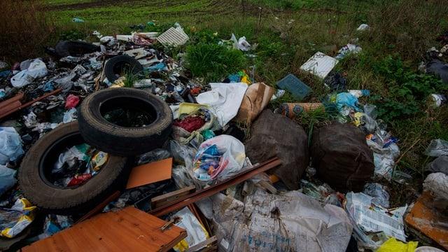Ein Müllberg liegt auf einer Wiese.