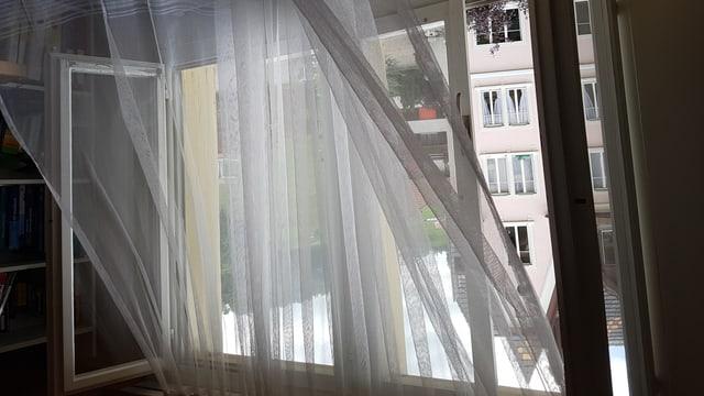 Wind bläst durch offenes Fenster, der Vorhang flattert.