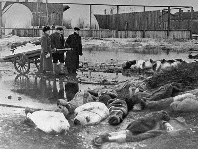 Leichen stapeln sich auf dem Friedhof.