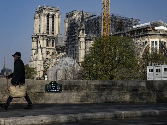 Notre Dame von weitem.
