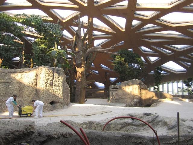 Der neue Elefantenpark im Zürcher Zoo.