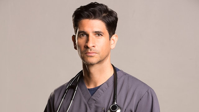 Raza Jaffrey spielt Dr. Neal Hudson.