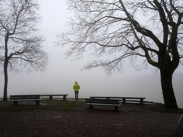 Eine Frau in einer gelben Jacke steht zwischen zwei Bäumen und mehreren Sitzbänken. Sie schaut auf eine dichte Nebelwand.