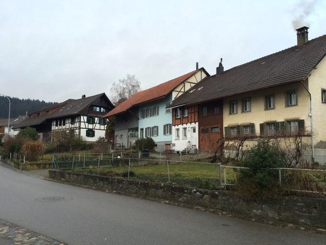 Drei nebeneinanderstehende Bauernhäuser mit Gärtchen davor