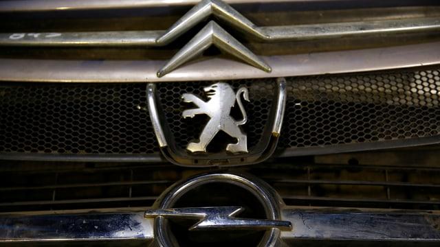 Kühlergrill von Citroen, Peugeot und Opel.