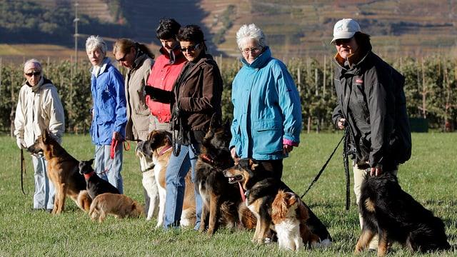 Hundebesitzer mit ihren Hunden stehen in einer Reihe.