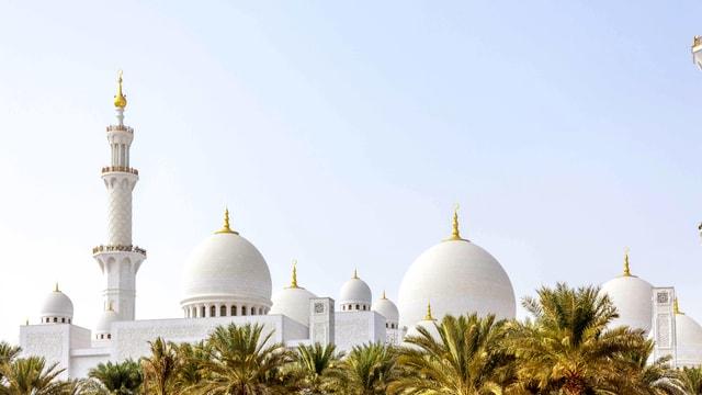 Ein Minarett und einige weisse Kuppeln sind hinter Palmen zu erkennen.
