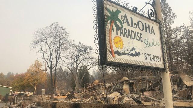 Ein Schild f¨ür «Aloha Paradise» in mitten von Überresten des Feuers