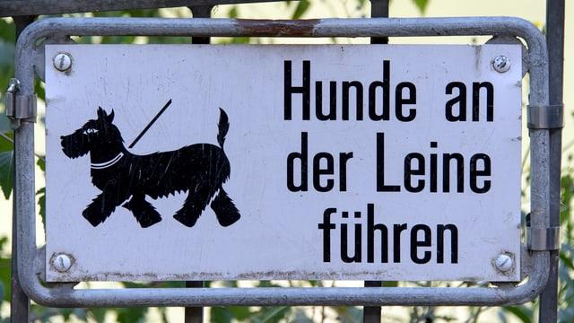 Ein Schild mit der Aufschrift «Hunde an der Leine führen».