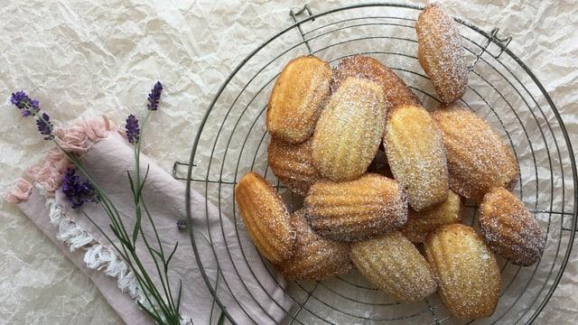 Mit Puderzucker bestäubte Lavendel-Madeleines auf einem Kuchengitter.