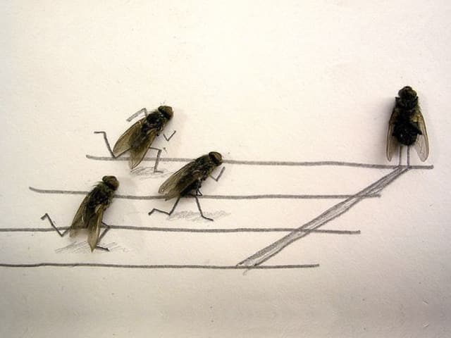 Kreative Idee! Motiv überlegen, zeichnen und Fliegen platzieren. Fertig.