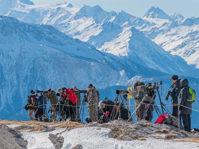 Viele Fotografen auf einer Krete, im Hintergrund die Walliser Alpen.