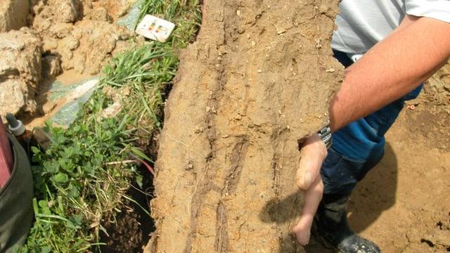Beprobung des Bodens in Diepoldsau