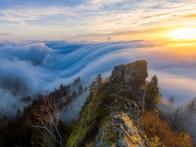 Ein Nebelmeer schwappt über eine Hügelkette.