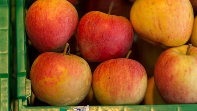 Gala-Äpfel werden in einer Kiste zum Verkauf angeboten.